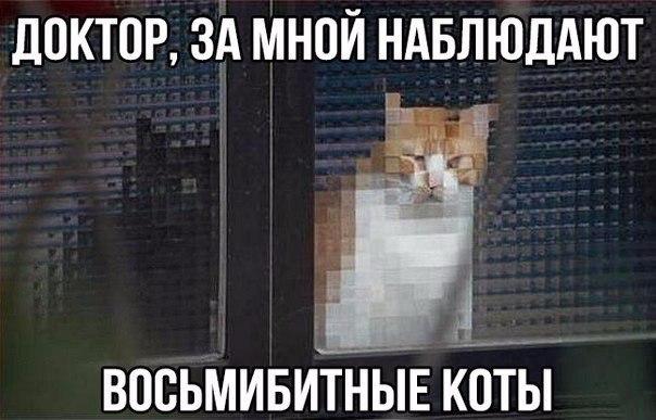 https://zxdemos.ru/uploads/images/2/1d2b7c5ffc5a076b31ce51fa944bcb48.jpg