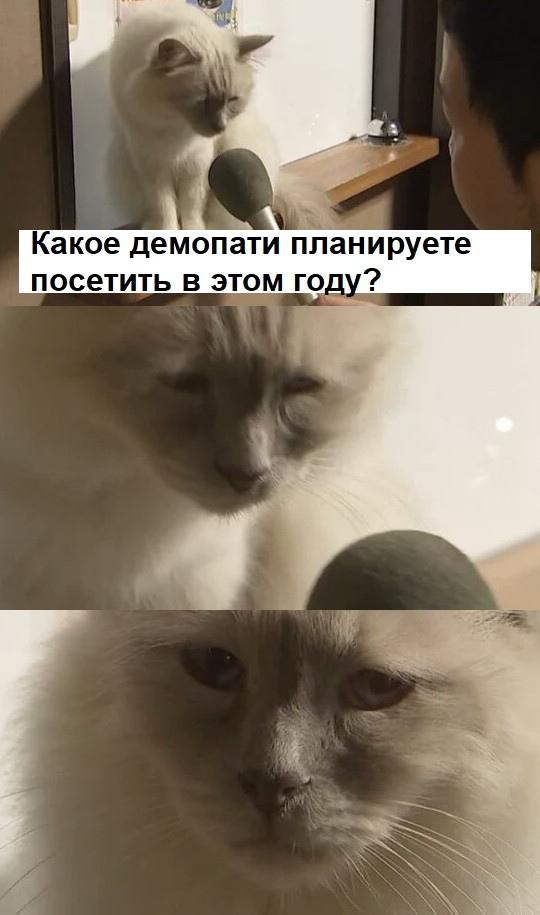 https://zxdemos.ru/uploads/images/2/e6f21b4d532d77e6fed70bf76699e8f7.jpg