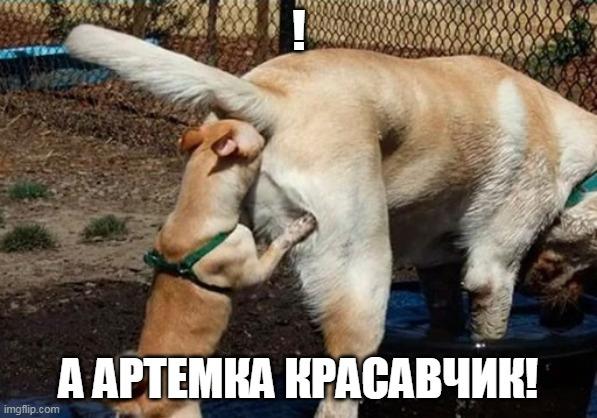 https://zxdemos.ru/uploads/images/93/690031d4d6004c222e091a12f78d57d4.jpg