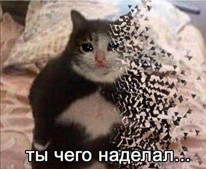 https://zxdemos.ru/uploads/images/93/f3b45b539feec2986ccdb692b8037f6a.jpg